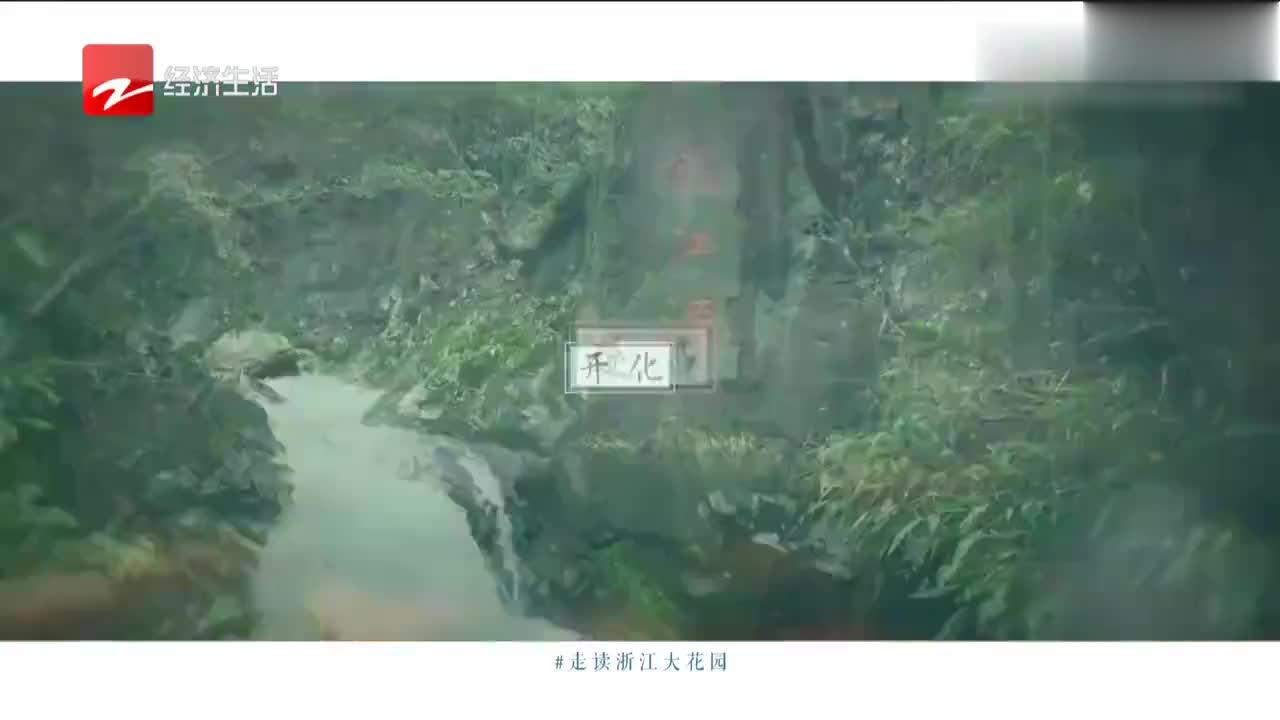 走读浙江大花园,带你初步了解安吉,不一样的视觉冲击