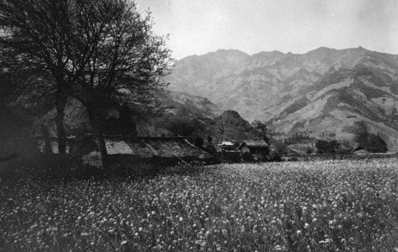 清朝晚期的四川农村,贞节牌坊随处可见