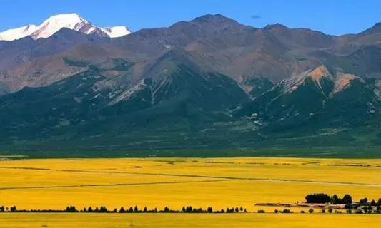 秋后青海周边游:岗什卡雪峰,八一冰川,哈拉湖,祁连山