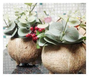 废旧物品手工diy制作花盆,也别有一番风味!图片