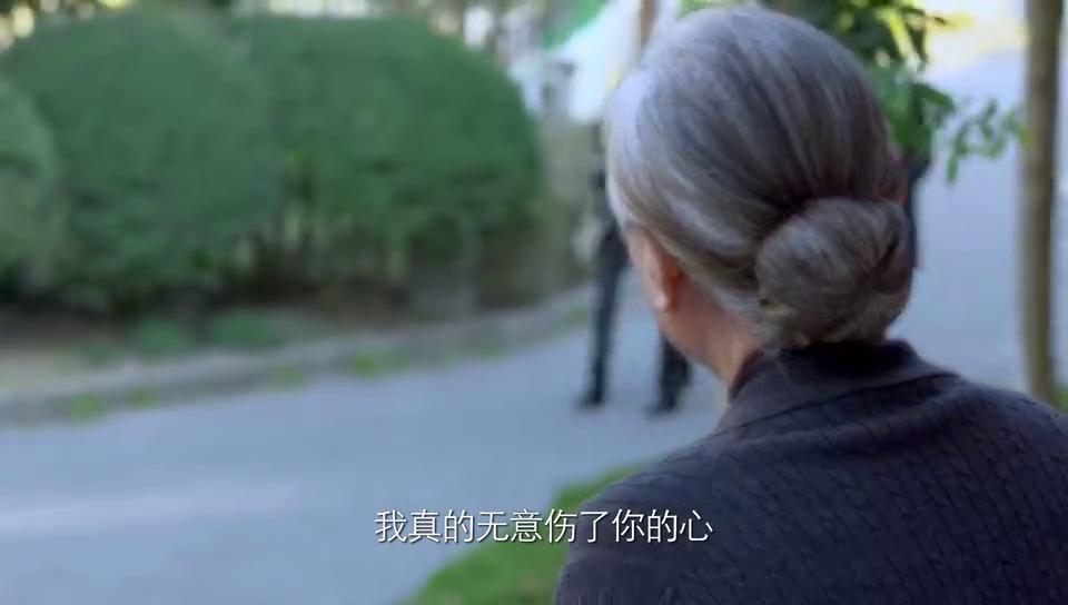 二胎时代:父亲去世送骨灰回家,儿子怕母亲触景伤情,母亲泪落!