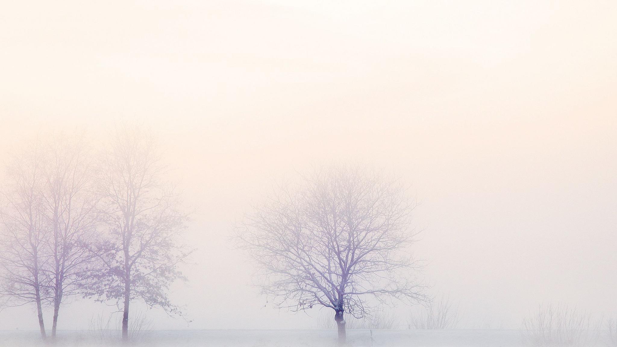 二十四节气立冬图片桌面壁纸,分辨率:1920x1200
