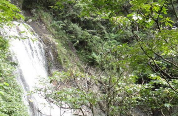 """旅游:龙归源景区——大安源中著名的景区,有""""天然大氧吧""""之称"""