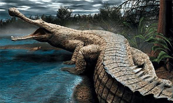 地球上真实存在过的十大怪兽, 恐龙都是小不点
