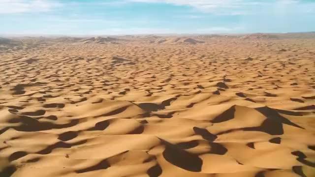 海王:两人来到沙漠里,这剧情真是没谁了,我给编剧满分!