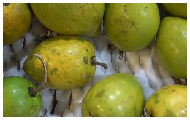 此种少见的水果吃起来很像蛋黄,口感很奇特,营养价值非常高