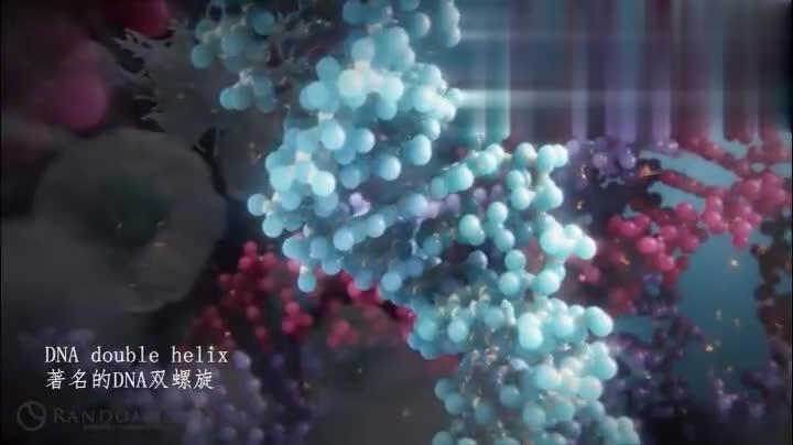 科技高能,虚拟现实VR技术实现科学生动观察复杂的人体生物!