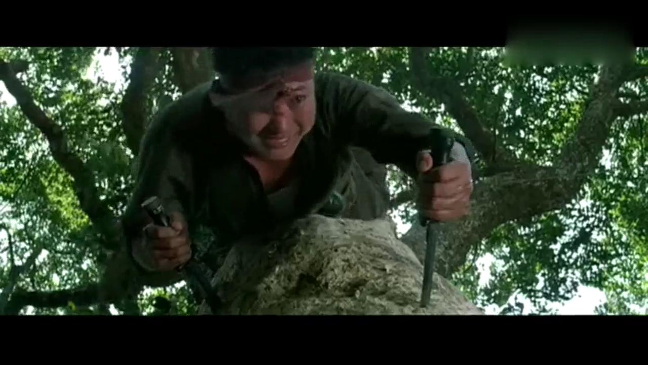 东方秃鹰,洪金宝炉火纯青的技术就是厉害,元彪也不差