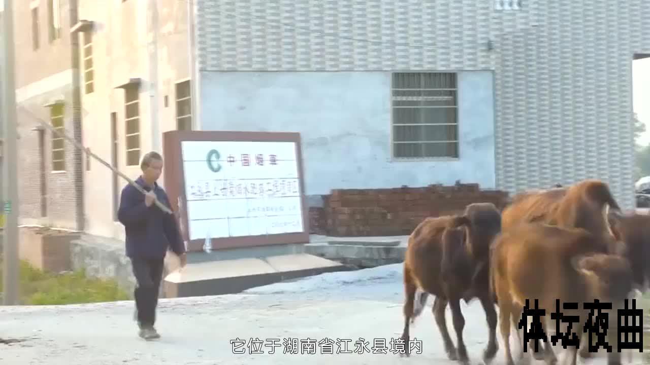 湖南一个古老小村,从唐朝就有人在此定居。