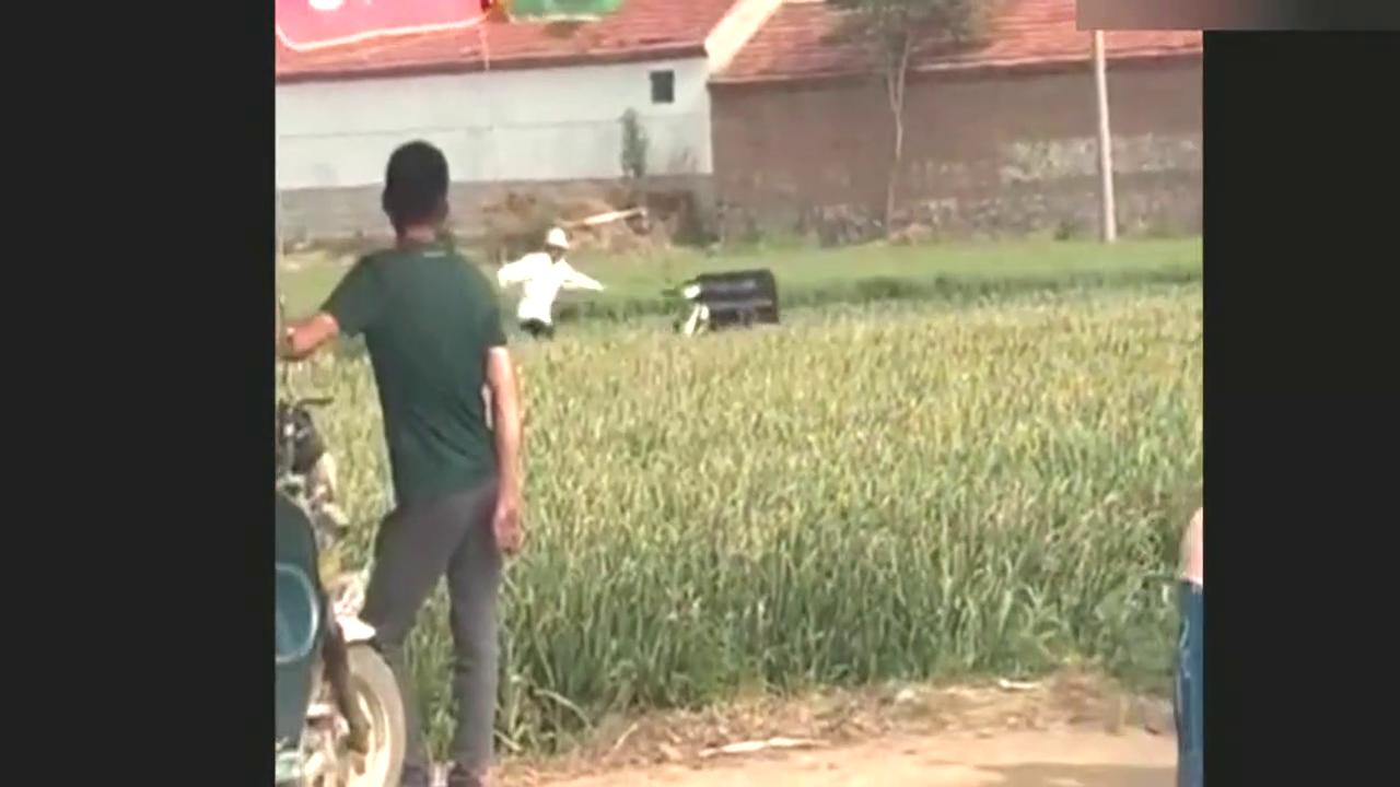 无人驾驶的三轮车在麦田里跑来跑去.