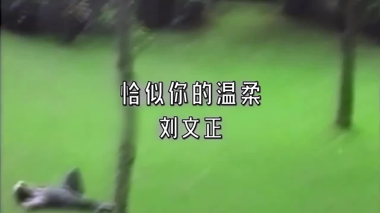 花样新世界倪萍范明迪厅对唱《恰似你的温柔》张晨光伴舞