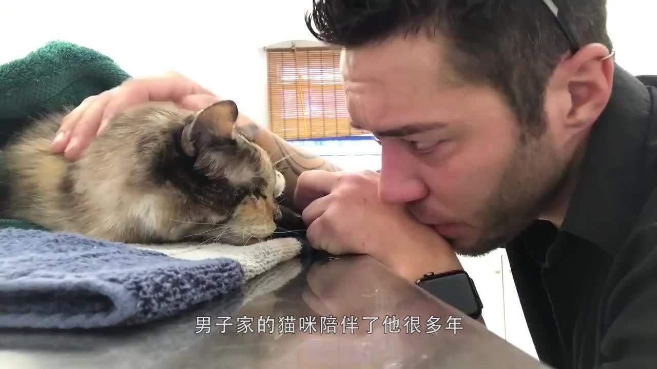 陪伴女子二十年的狗狗即将注射安乐死女子直接哭到崩溃