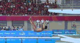 继菲律宾灵魂跳水队后又出新素材,网友:原谅我不厚道地笑出了声
