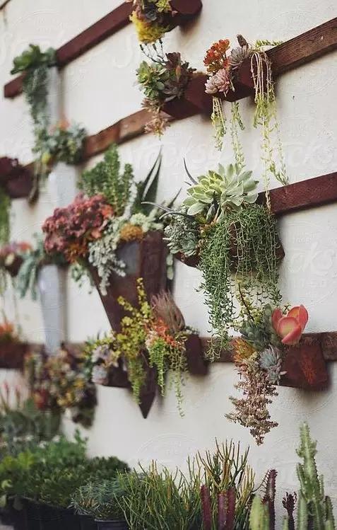 【装修公司】8种让小庭院和阳台成为垂直精致小花园方法!赶紧get图片