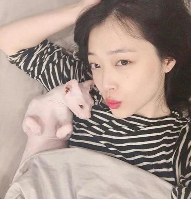 有一种友情叫金希澈,低调收养崔雪莉的猫,网友泪崩了