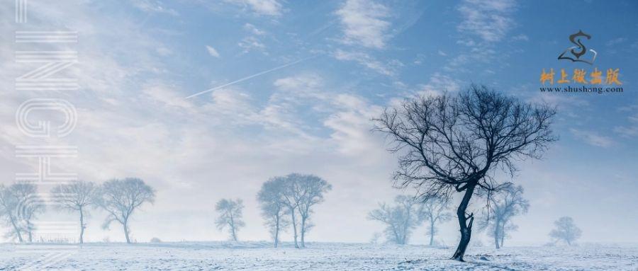 孤独而灿烂,灵魂的共鸣——老灵魂