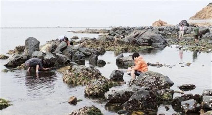 """这个村的人全靠捡""""石头""""发家致富,成为中国最""""奇特""""的村庄!"""