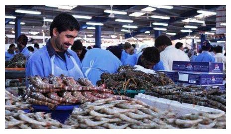 迪拜是全球最富有的城市,迪拜人平时都吃什么?首富就是壕气!