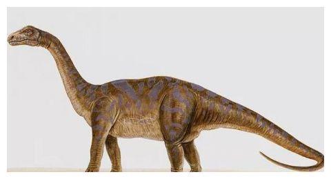 恐龙并不冷血?耶鲁大学:恐龙血液应该是温暖的
