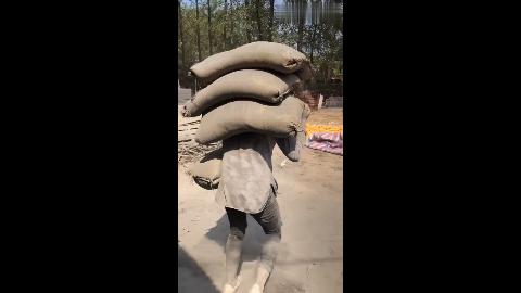 水泥妹挑战一次搬四袋水泥,瘦弱的身体抗这么多真不容易