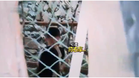 爸爸去哪儿:杨阳洋太可爱了上一秒说要保护姐姐,下一秒躲到身后