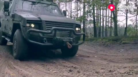 德国莱茵金属防务公司-野狗高机动轮式装甲车