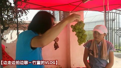 【竹童的VLOG】湖州承包葡萄种植大棚的贵州一家人