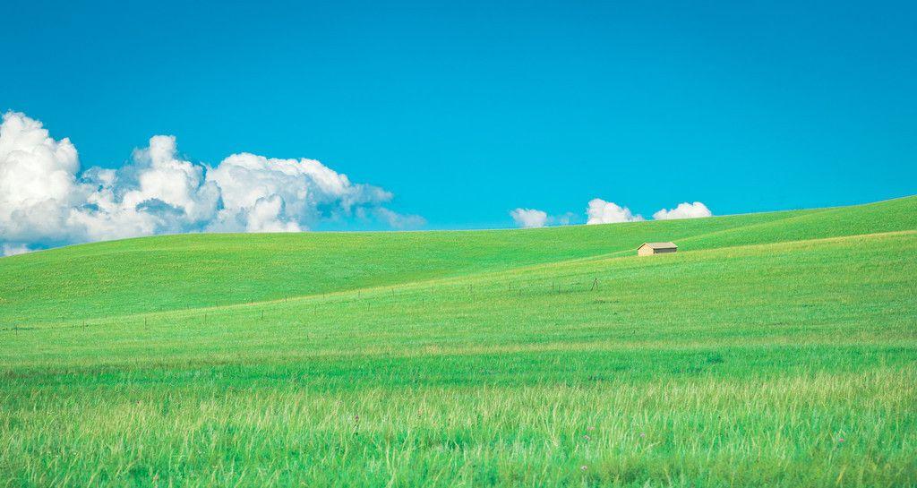 """盛夏锡林郭勒,美景堪比壁纸,联合国评为""""亚欧大陆的样板草原"""""""