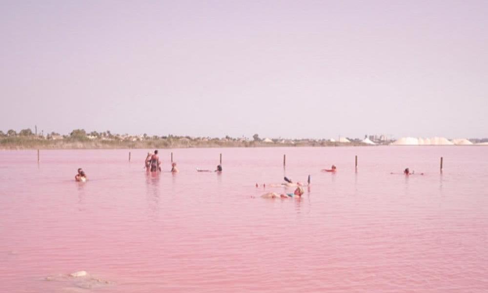 提到湖,你会想到什么颜色?绿色?蓝色?你见过粉红色的湖吗?