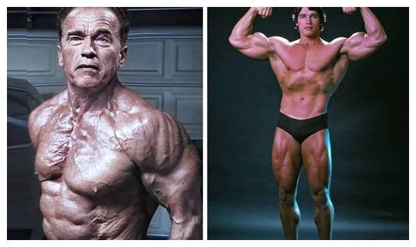 施瓦辛格69岁在健身房中重训,年龄不过是个数字