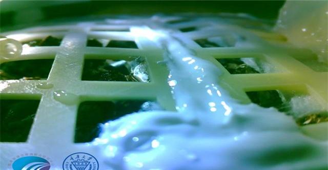全球首例!嫦娥四号在月球培育出棉花嫩芽,马铃薯还会远吗?