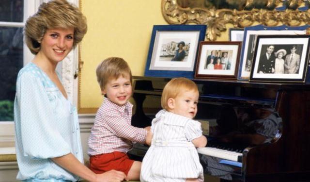 这些照片足见黛安娜王妃对威廉王子和哈里王子的爱……