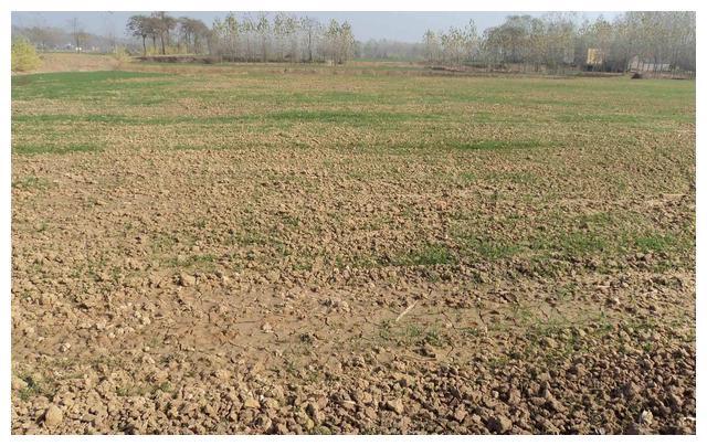 农村土地承包到期将会被收回?一类土地真会被收回!农民要注意