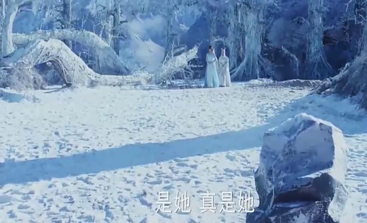 幻城:梨落盛装打扮回到人族,好友们却觉得她穿着很怪异