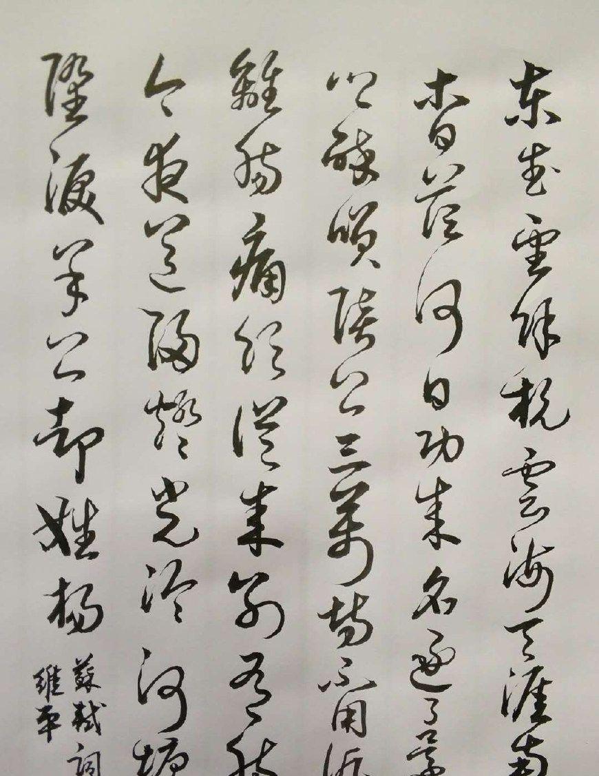 胡维平草书作品 苏轼《南乡子 和杨元素时移守密州》