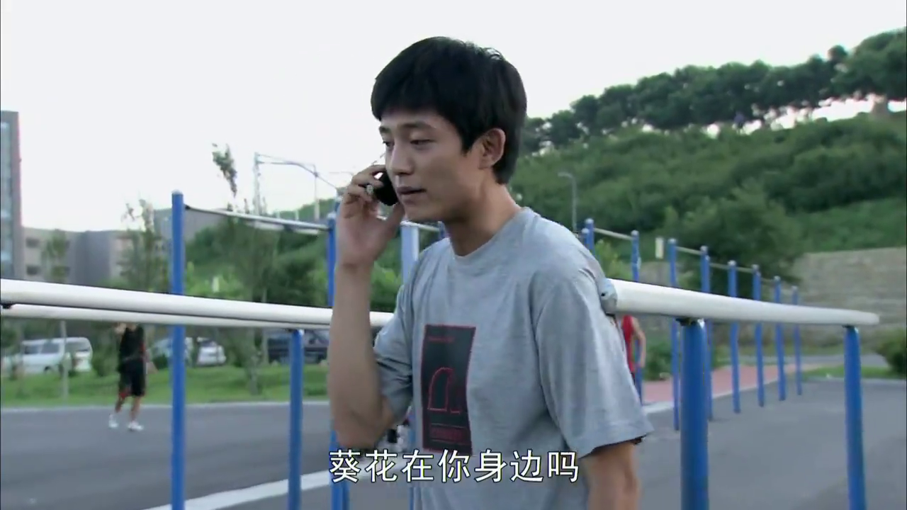 葵花回乡卖奶牛,怎料江闪闪趁虚而入找麦田:想和我出国留学吗?