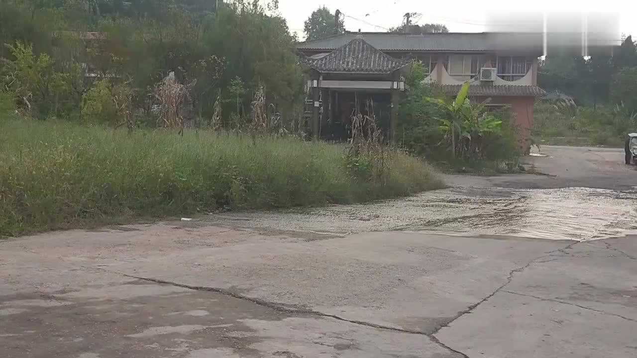 四川射洪市周边曾经生意火爆的农家乐为啥现在都关门大吉了