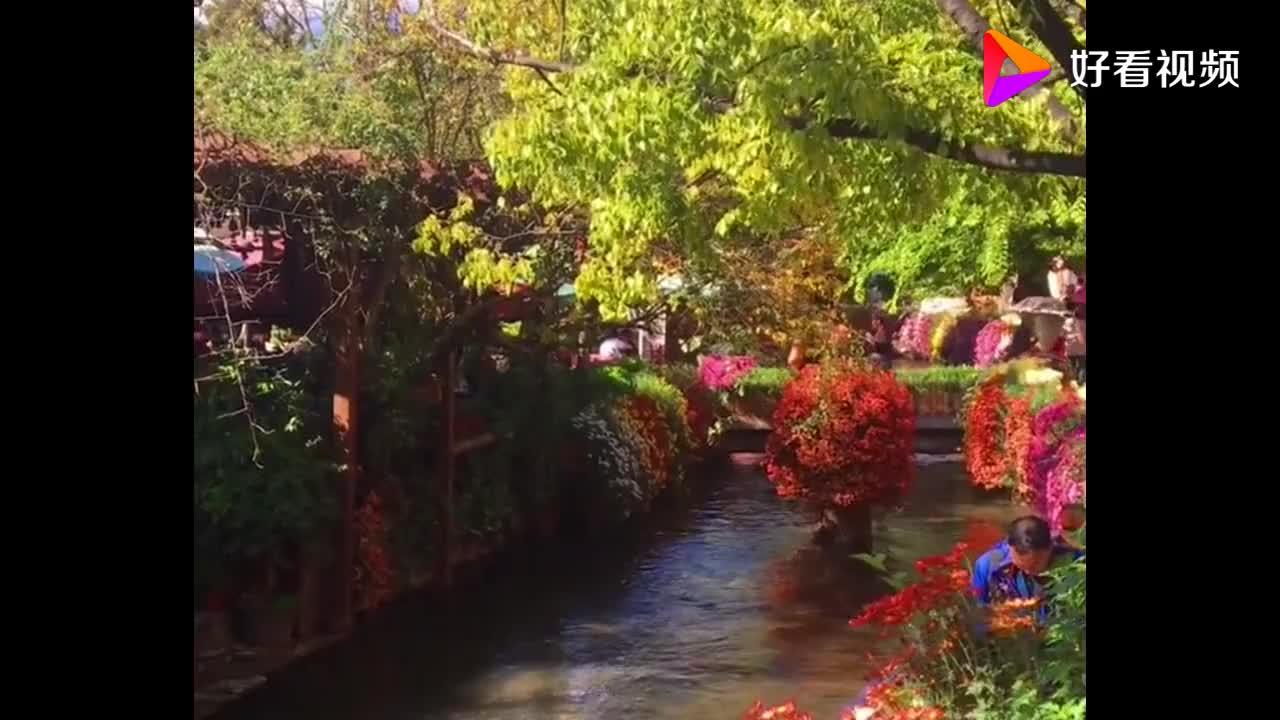 实拍秋日里的丽江古城绚烂多彩的景色优美的环境让人向往