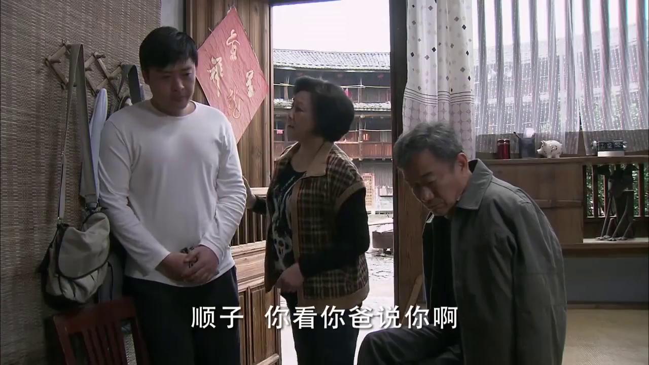 母亲觉得顺子受过高等教育,待在农村不是办法,想让他去公司上班