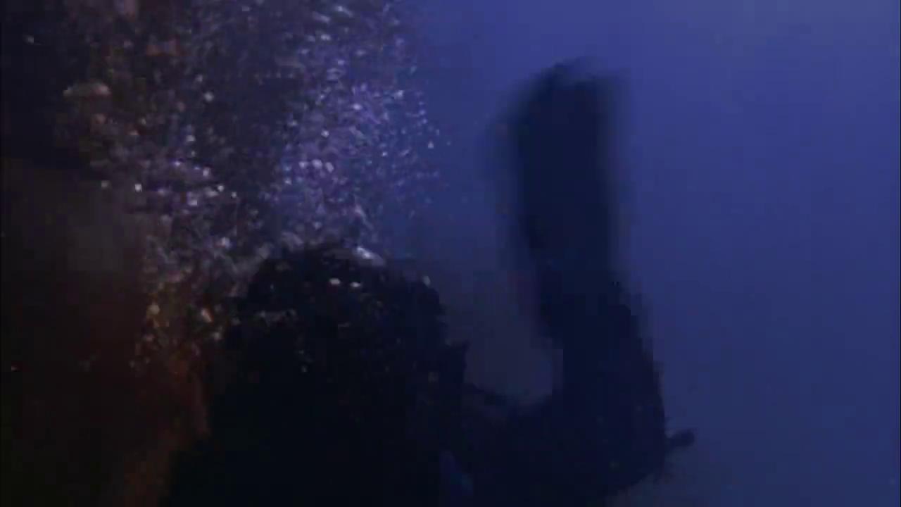 怒海狂鲨:男子和鲨鱼对抗,潜艇也进水,真是灾难不断