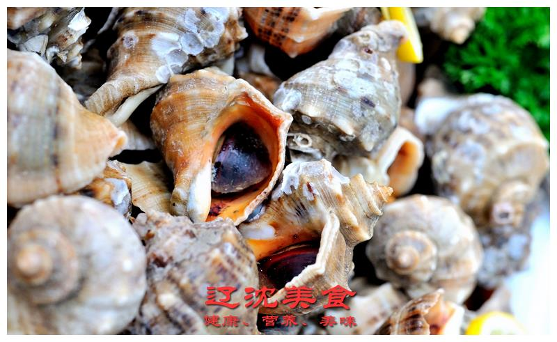 海螺有三个部位不能吃,容易引起头昏或中毒,图文身体构造详解