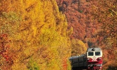 在秋天坐上开往长白山的绿皮火车