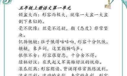 """语文老师:将五年级上册考点知识""""一锅端"""",难怪学生个个高分"""