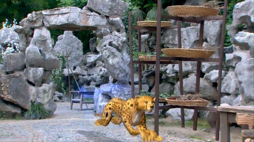 申公豹现出原形,竟然是一只金钱豹,吓得姜子牙胡子都长出来了