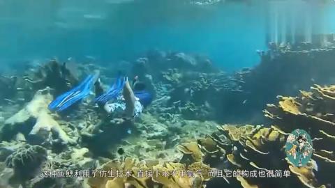 国外牛人发明人造鱼鳃,像鱼一样在水下呼吸,不是看到都不相信