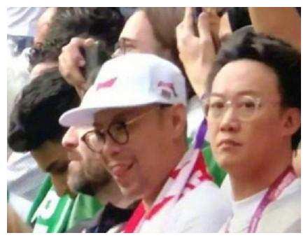 明星看世界杯, 陈奕迅最接地气, 鹿晗最真实,只有他最土豪!