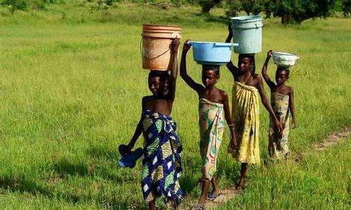 非洲人解决不了温饱,是因为土地贫瘠吗?看中国人种的菜就明白了