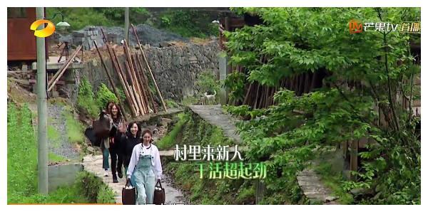 蘑菇屋4美:陈乔恩容祖儿宋茜3人玩成一片,王丽坤却几次独自一人