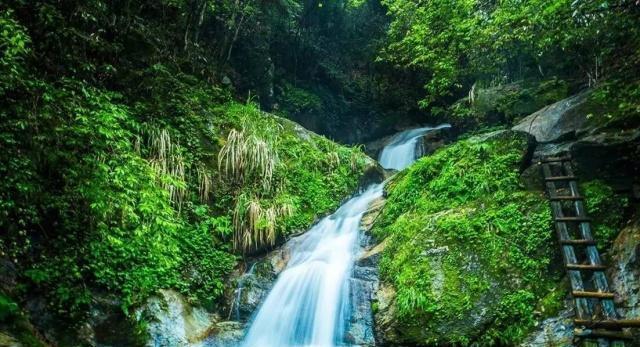 """安徽最""""冷清""""的景点,两旁原始森林覆盖,进入景区手机都没信号"""