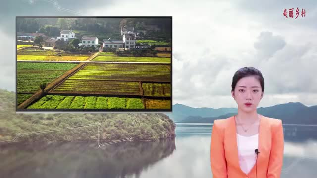 土地管理法调整后,农民:集体土地入市是啥意思?会带来哪些影响